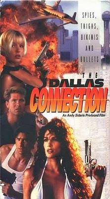 Poster Of The Dallas Connection (1994) Full Movie Hindi Dubbed Free Download Watch Online At worldfree4u.com