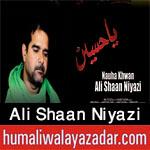 http://www.humaliwalayazadar.com/2017/09/ali-shaan-niyazi-nohay-2018.html