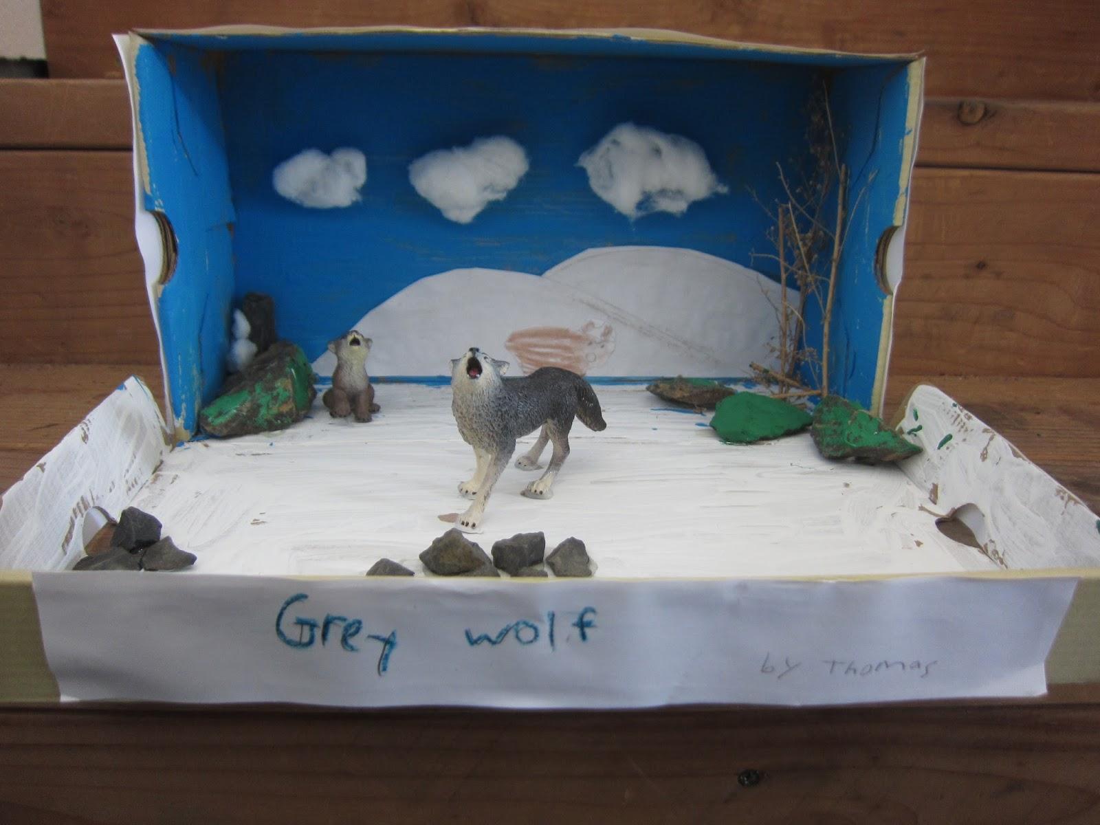 Arctic wolf diorama - photo#10
