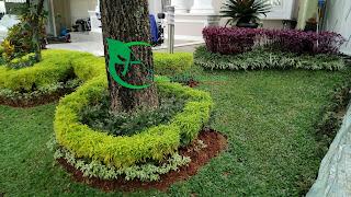 jasa renovasi taman , jasa buat taman , menjual tanaman hias