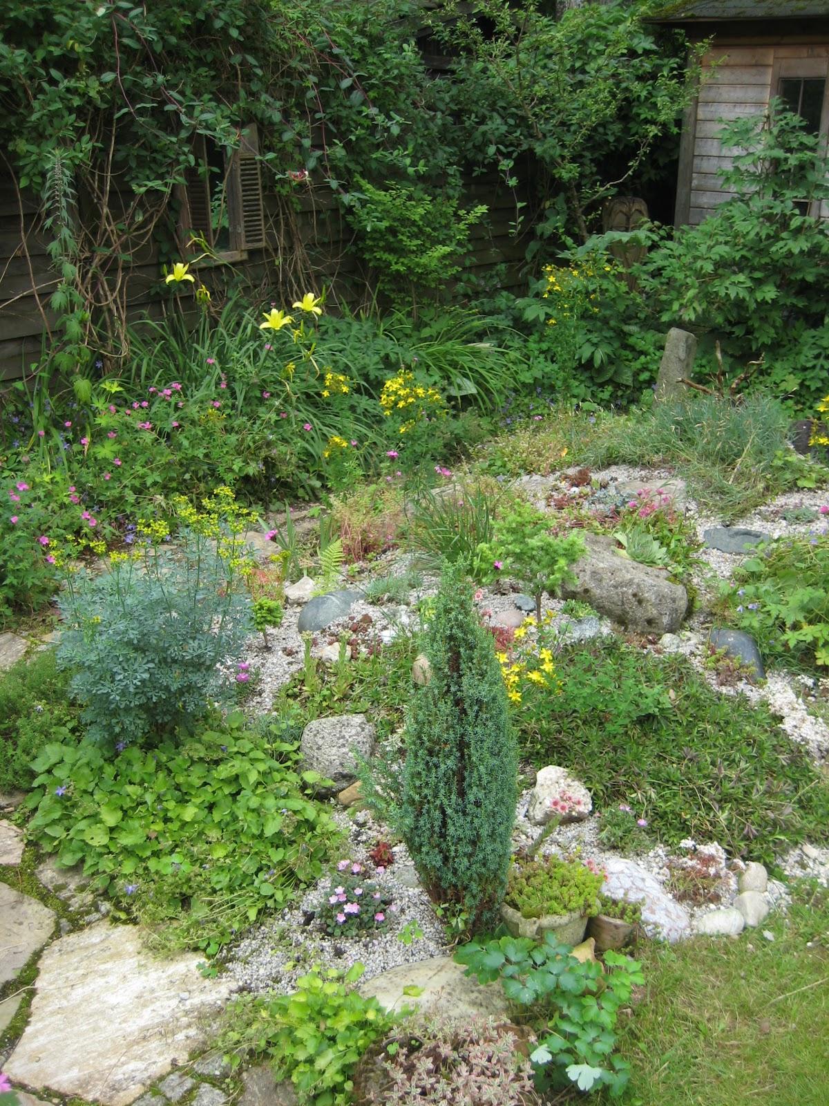 Luxus Pflanzen Steingarten Schema