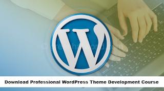 Download Professional WordPress Theme