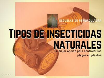 Los insecticidas naturales es la mejor opción para controlar las plagas en plantas