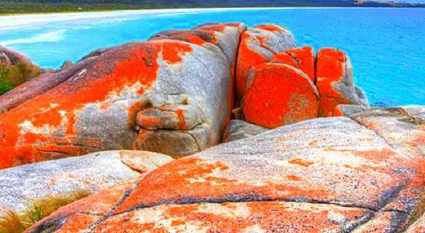 Daftar Pantai Teraneh Didunia yang Wajib di Kunjungi