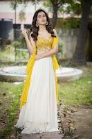 Rashi Khanna Latest Gorgeous Photo Stills TollywoodBlog