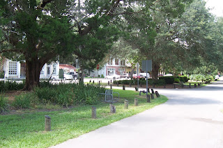 Micanopy-downtown-view under the trees