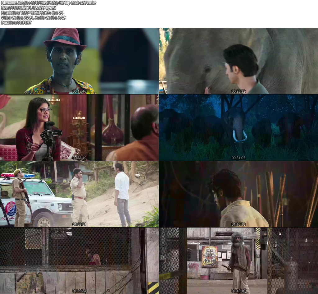 Junglee 2019 Hindi 720p HDRip ESub x264 | 480p | 300MB | 100MB HEVC Screenshot