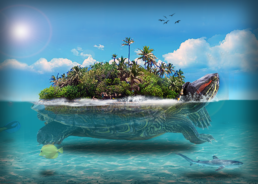 GC612KP #45 Turtle Island (Unknown Cache) In Florida