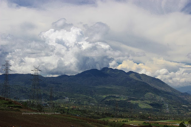Foto lereng Gunung Guntur.