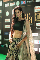 Shu Aiyappa Spicy Black CHoli Low Rise Ghagra ~  Exclusive 05.JPG