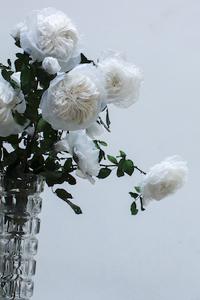 William Amor/Les Créations Messagères : Bouquet de ROSA PLASTICAE
