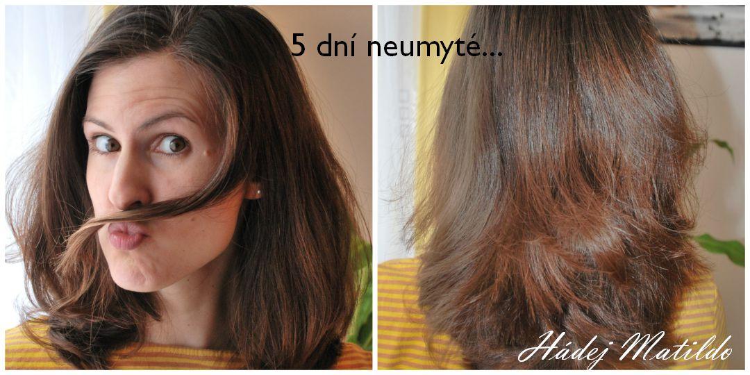vlasová kosmetika, péče o vlasy, vlasy, přírodní kosmetika