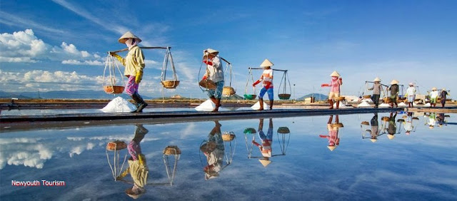 The salt fields near Van Phong Bay, Khanh Hoa province 1