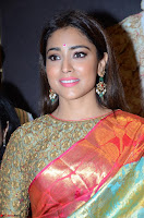 Shriya Saran Looks Stunning in Silk Saree at VRK Silk Showroom Launch Secundrabad ~  Exclusive 072.JPG
