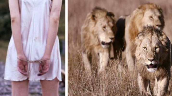 A 12-year-old Girl Kidnapped And Beaten By Men - Then Lions Surround Her And Make The Unthinkable