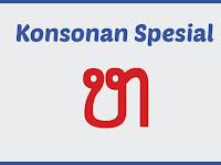 Konsonan Spesial Lao