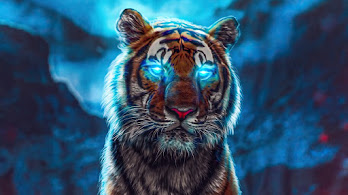 Tiger, Glowing, Eyes, 4K, #6.452