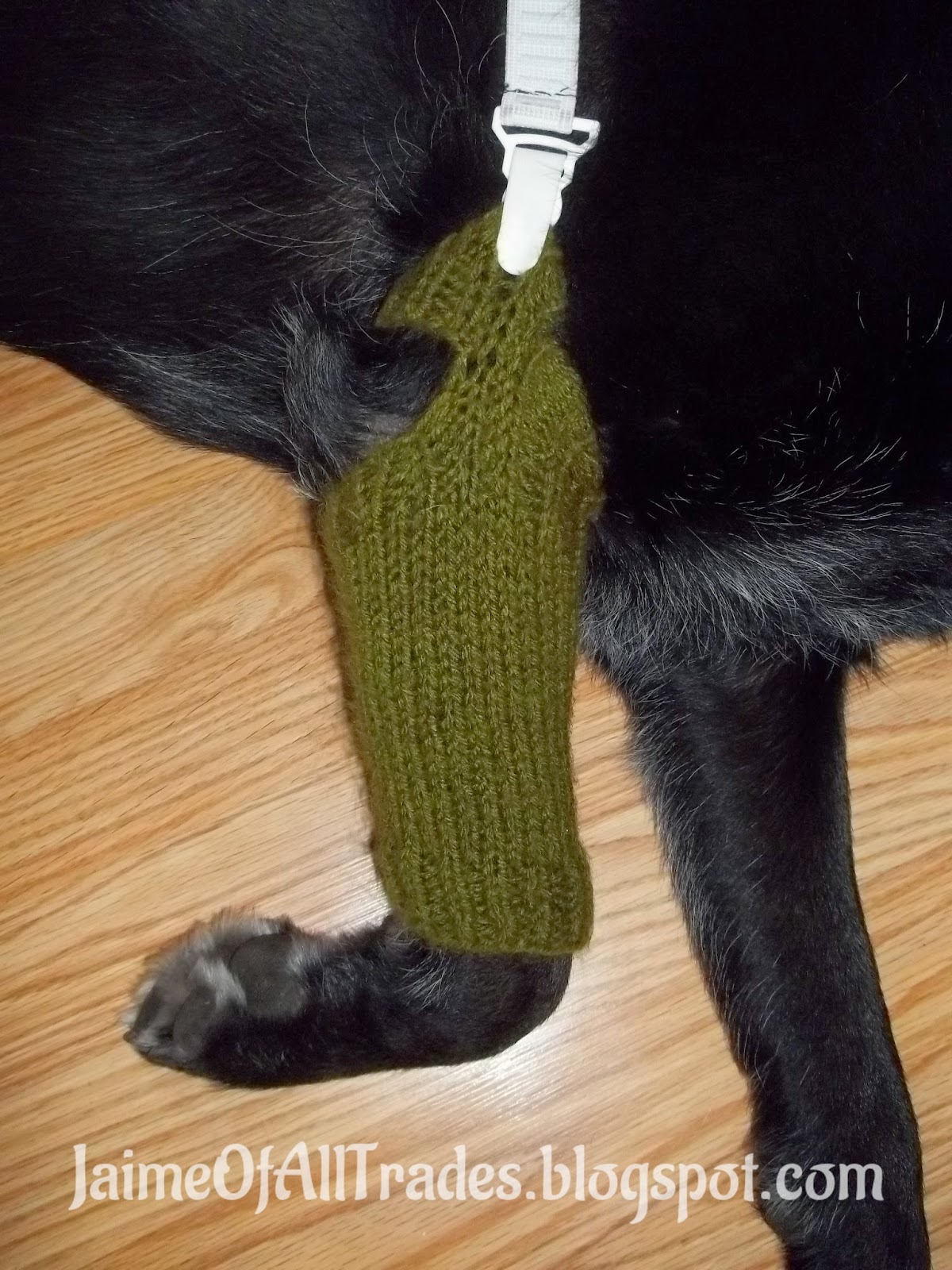 Jaime of All Trades: Free Knitting Pattern Dog Chew-No-More Leg Cover