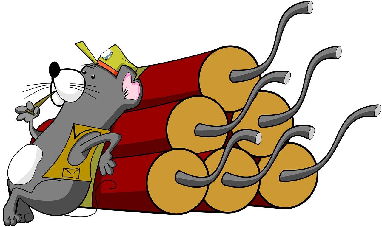 Stadt-Ratte. Erhellendes aus dunklen Kanälen: Bombenstimmung in der ...
