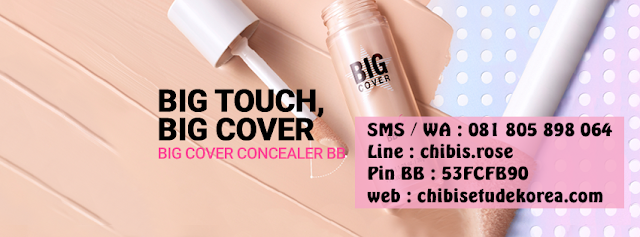Etude House Big Cover BB Concealer SPF 50, review Etude House Big Cover BB Concealer SPF 50, etude house jakarta, etude house indonesia, jual etude house murah, harga etude house indonesia, etude house semarang, etude house bb cream, bb cream korea, jual etude house original, jual etude house murah, chibis etude house korea, chibis prome