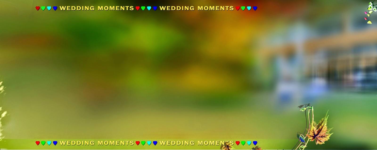 Karizma Album 12x30 Psd Wedding Background Free Download - StudioPk
