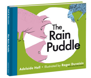 The Rain Puddle Fully Illustrated Hardback Available March 2017 Bodleian Children's Books