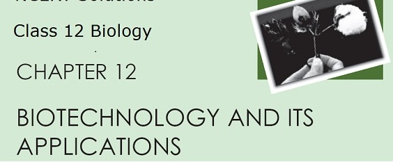 CLASS 12 BIOLOGY NOTES :: CHAPTER -- BIOTECHNOLOGY AND ITS