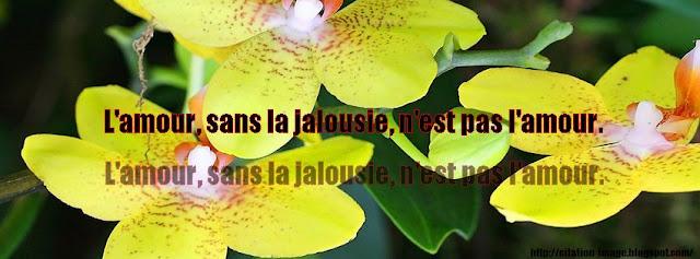 Citation jalousie en image