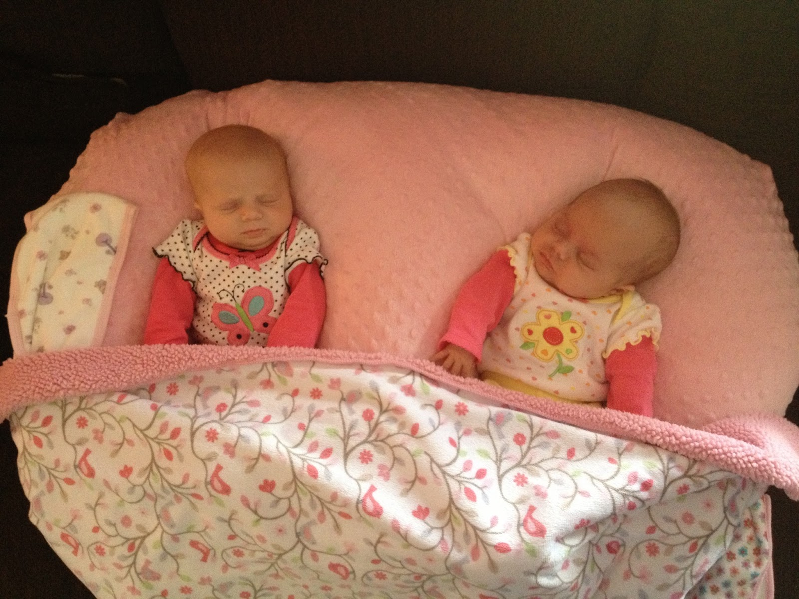 A Lucky Ladybug Twin Z Nursing Pillow Review and Giveaway