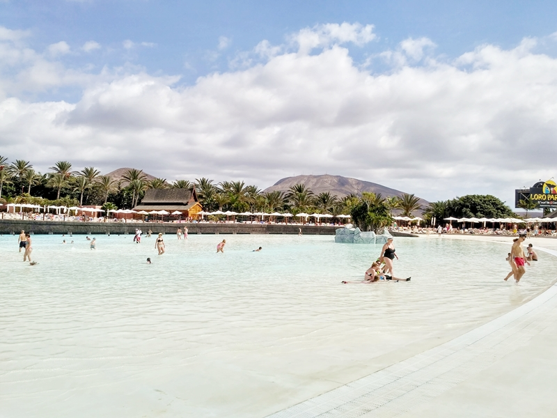 Teneryfa, atrakcje, Teneryfy, wulkan Teide, Los Gigantos, barraquito, hiszpania, wyspa, zakreecona, kręcone włosy, siam park, loro park