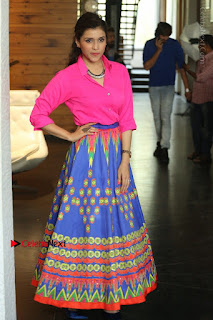 Actress Mannar Chopra in Pink Top and Blue Skirt at Rogue movie Interview  0083.JPG