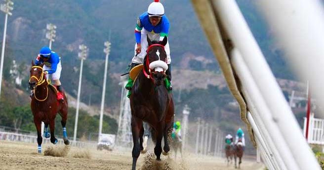 Carreras Hipodromo La Rinconada — Taigifabero tk