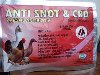 Obat ampuh Penyakit Berak Kapur Pada Ayam