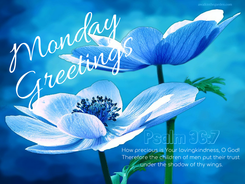 A walk in the garden monday greetings the lovingkindness of the lord monday greetings the lovingkindness of the lord m4hsunfo