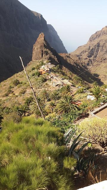 Just Tenerife
