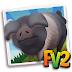 Farmville 2  Cinta Senese Domuzu Alma Hilesi