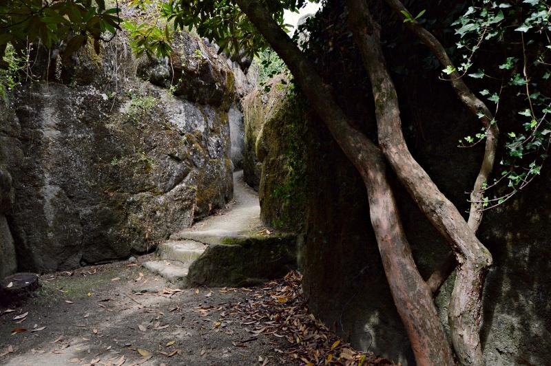 cuevas parque do pasatempo