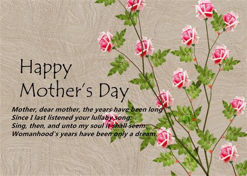 Happy mothers day quotes from daughter in law | Quotes Ring