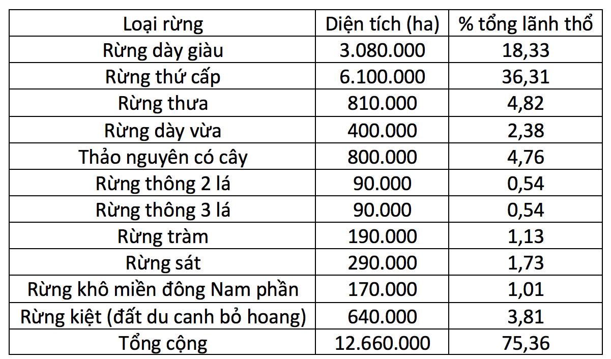 Rừng Miền Nam Việt Nam Nam Vĩ Tuyến 17 Xưa Va Nay Con Hay Mất Dan Lam Bao