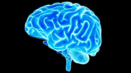 Senam Otak (Brain Gym) Meningkatkan Perkembangan dan Potensi Otak