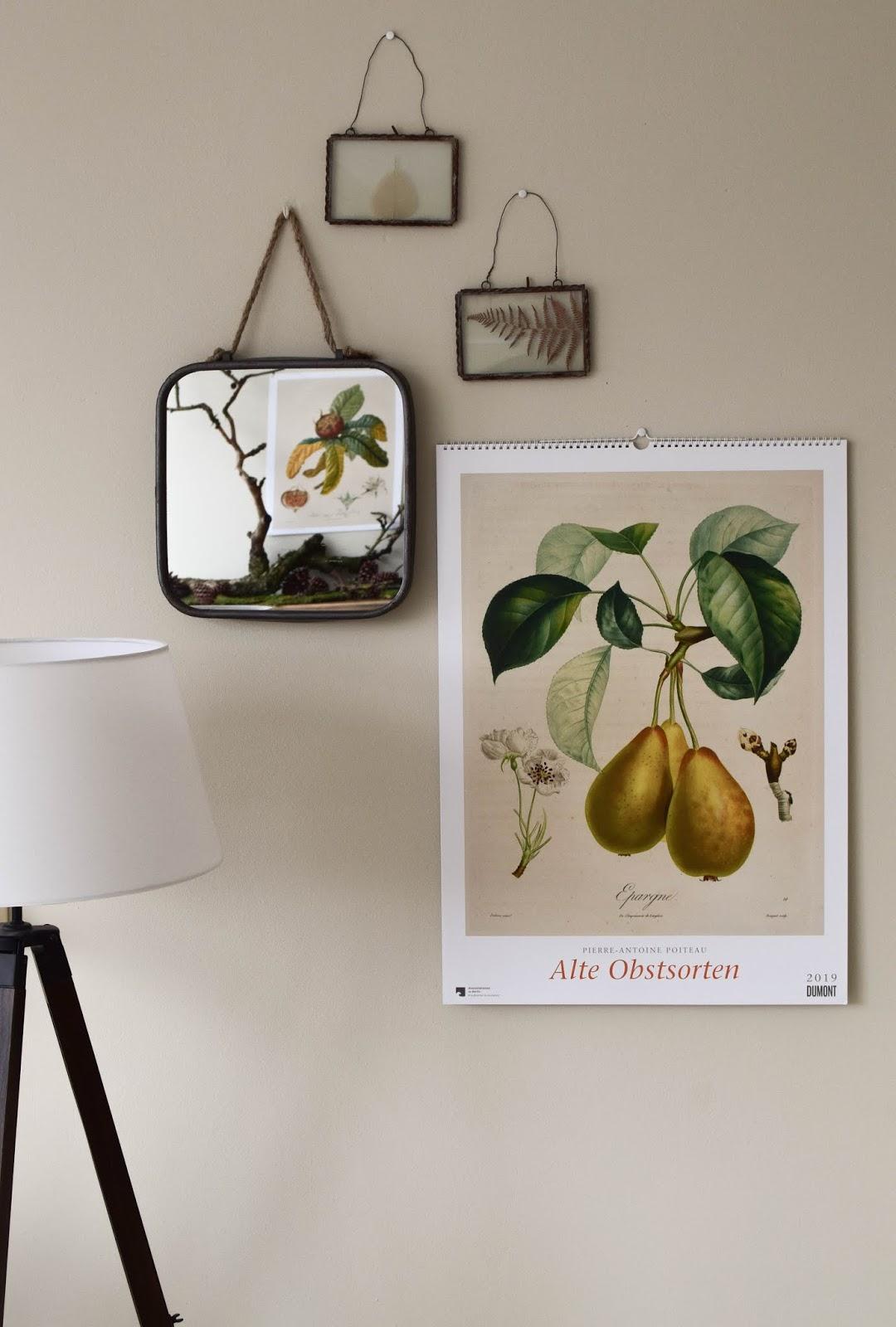 Kalender 2019 mit botanischen Zeichnungen Drucke Poster Deko Dekoidee Wanddeko von DUMONT teNeues Alte Obstsorten