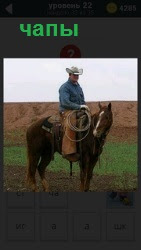 Ковбой сидит на лошади в шляпе верхом и одет в коричневые чапы. В руках держит веревку