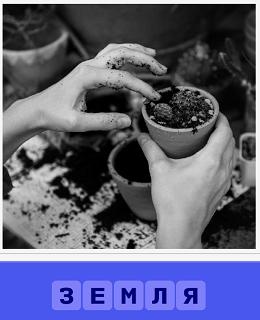 земля для рассады кладут в горшки и под цветы в том числе готовятся