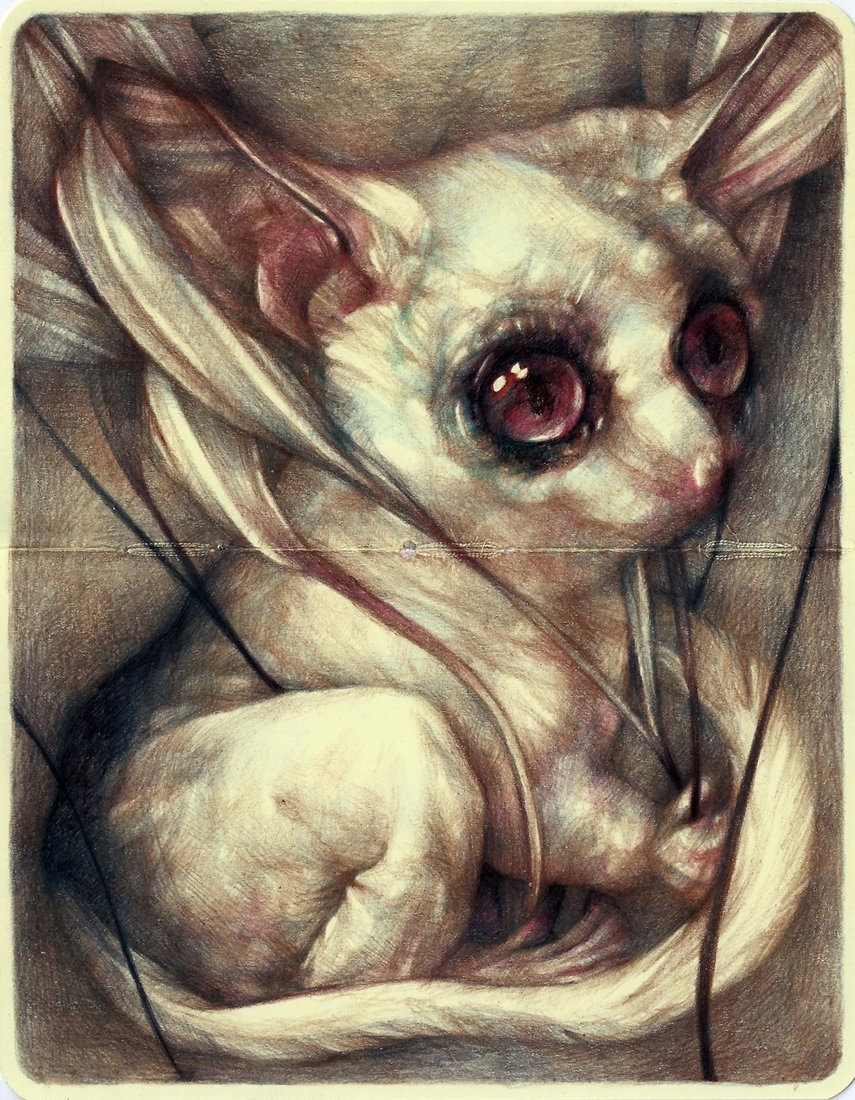 06-Marco-Mazzoni-Surreal-Animal-Drawings-www-designstack-co