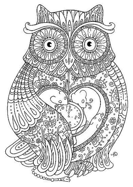 Adult Coloring Pages Owl  Google Search