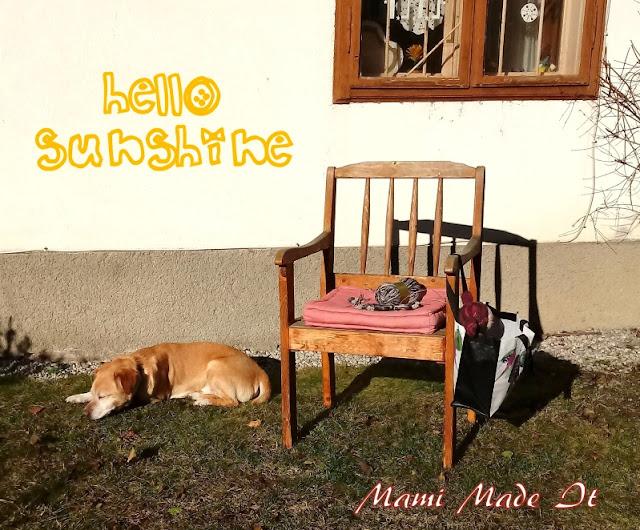 Stricken mit Hund - Knitting with dog