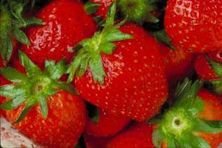 Primavera - Alguns alimentos da estação e seus benefícios para a saúde