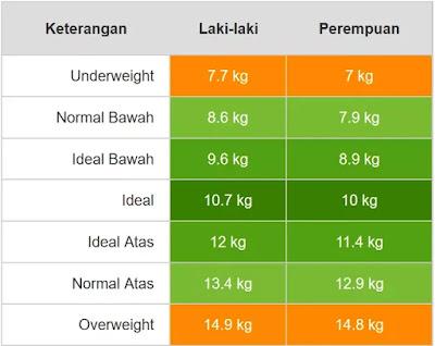 Berat badan & Tinggi Anak Usia Satu Tahun Lima Bulan laki-laki & perempuan