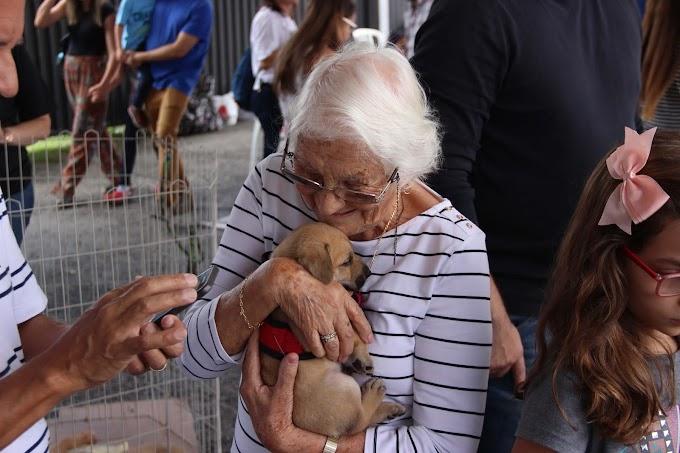 Mercado Pet: Brasil concretiza-se como o segundo maior do mundo