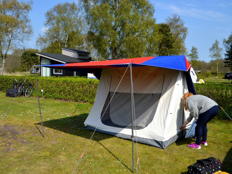 isabella telte